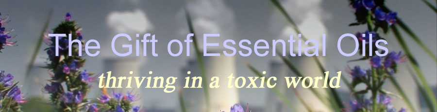Title: Gift of Essential Oil superimposed on image of wild flowers by pond with nuclear plant on opposite shore.