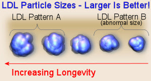 Comparison of LDL Cholesterol Particle Sizes