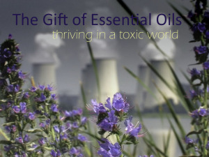 Title slide, flowers with active nuclear plant in background