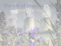 The Gift of Essential Oils, thriving in a toxic world | video